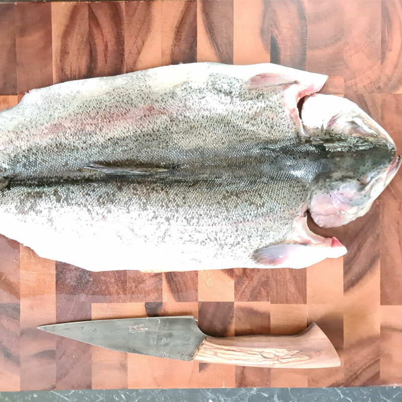 UDS Ugly Drum Smoker Smoked Trout